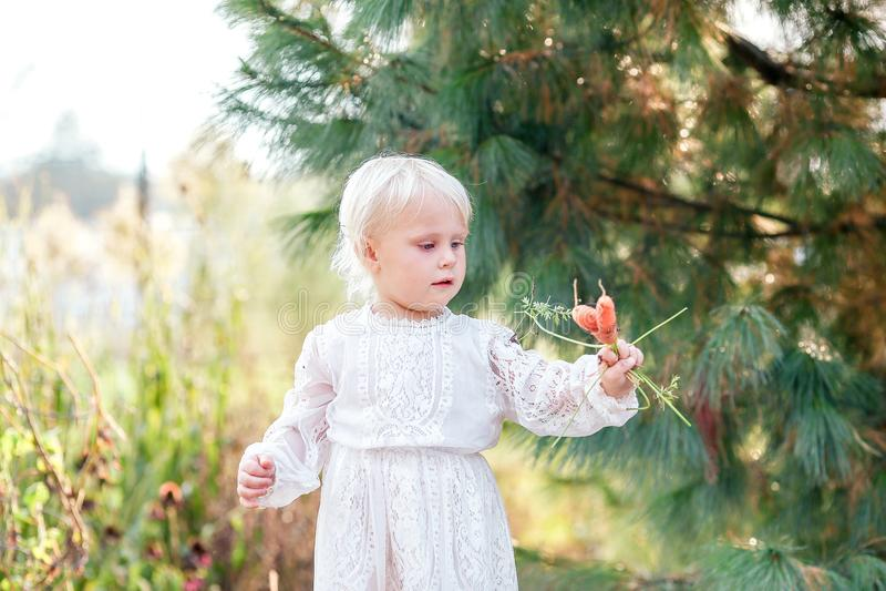Сладостный ребенок маленькой девочки держа свеже выбранные овощи от t стоковые изображения