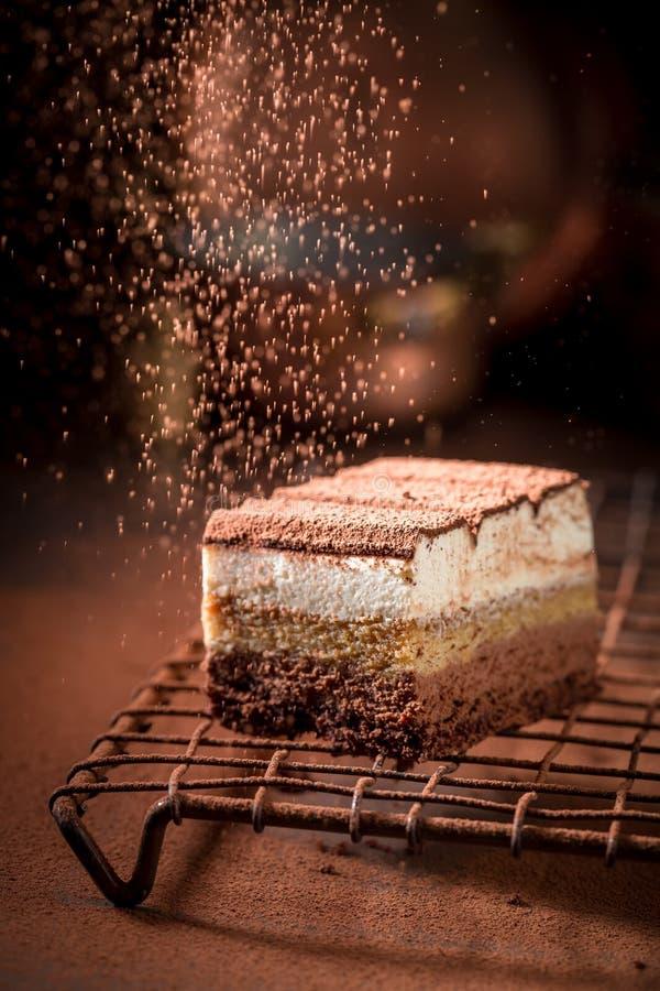 Сладостный торт тирамису с какао, mascarpone и печеньями стоковые изображения