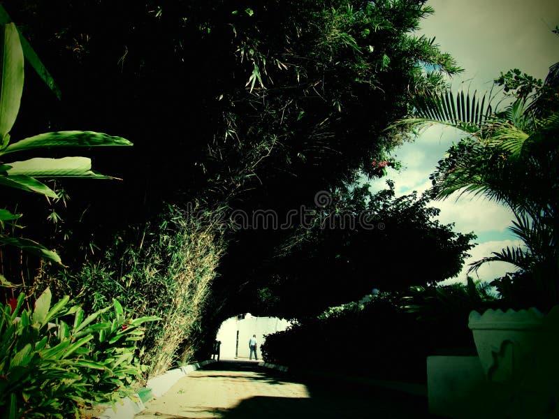 Следовать мной однако тоннель влюбленности стоковое фото rf