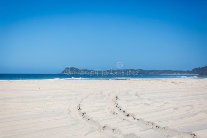 следы колеса 4wd на пляже стоковое изображение rf
