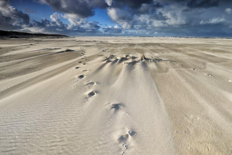 Следы на пляже песка на ветреный день стоковые изображения rf