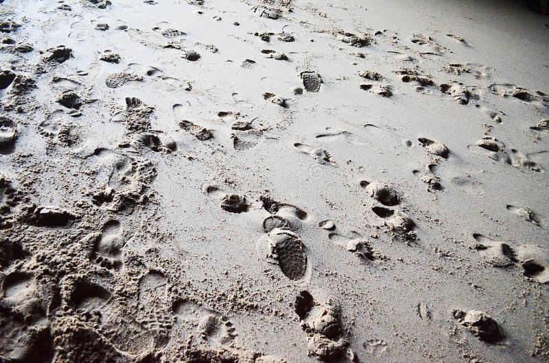 Следы ноги в песке стоковое изображение