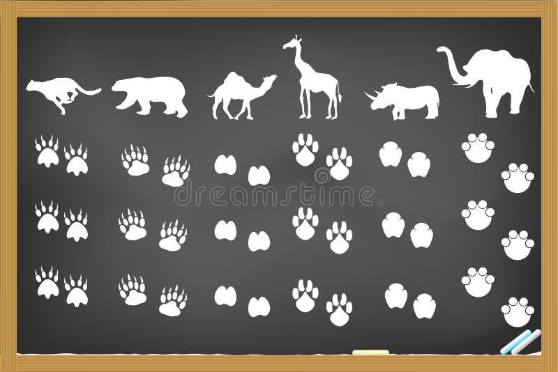 интересно самим картинки следы африканских животных первым