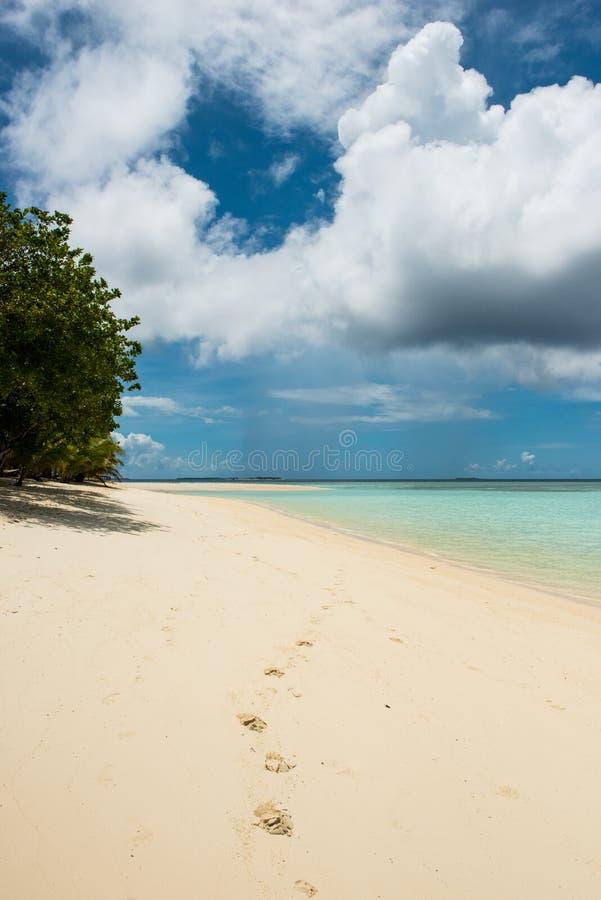 Следы ноги на песчаном пляже стоковое фото rf