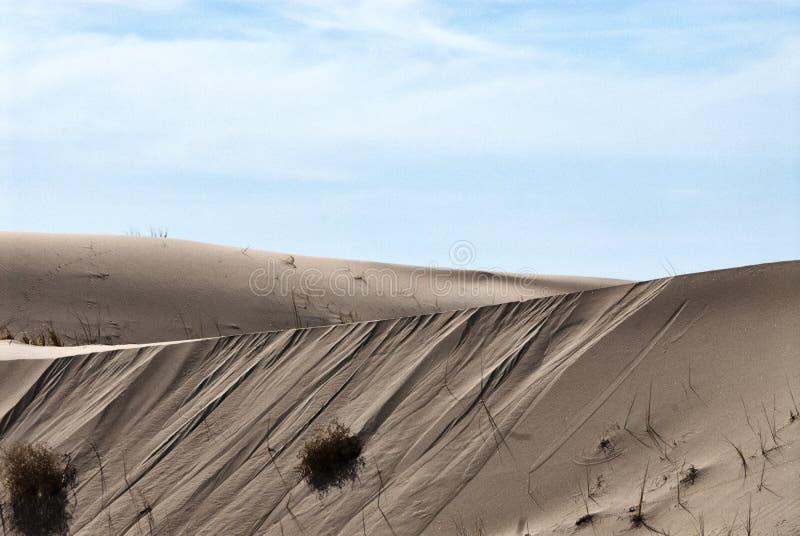 Следы песчанной дюны ландшафта пустыни животные стоковая фотография