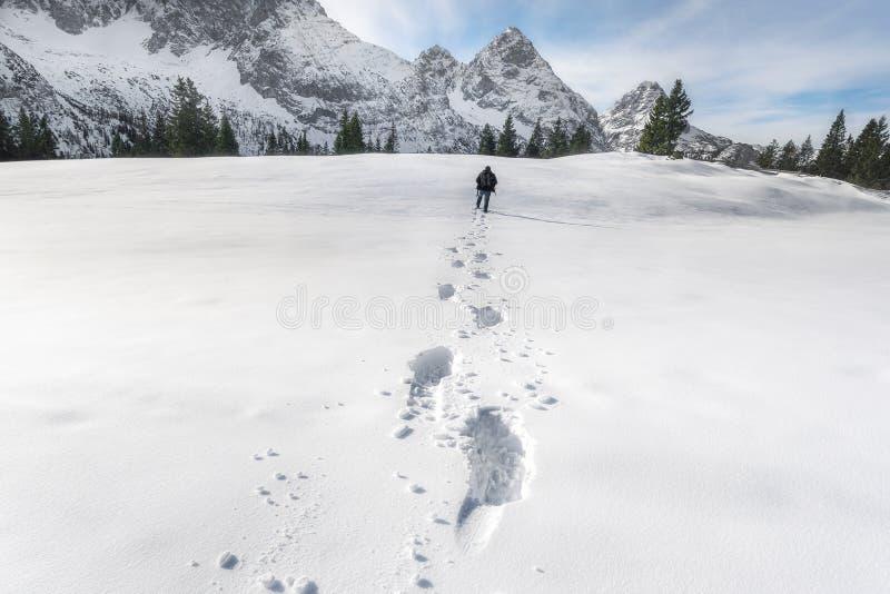 Следы снега в горах Альп Зимние прогулки стоковое фото