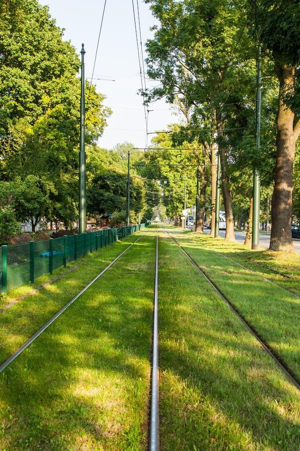 Следы трамвая в зеленом городе стоковые фотографии rf