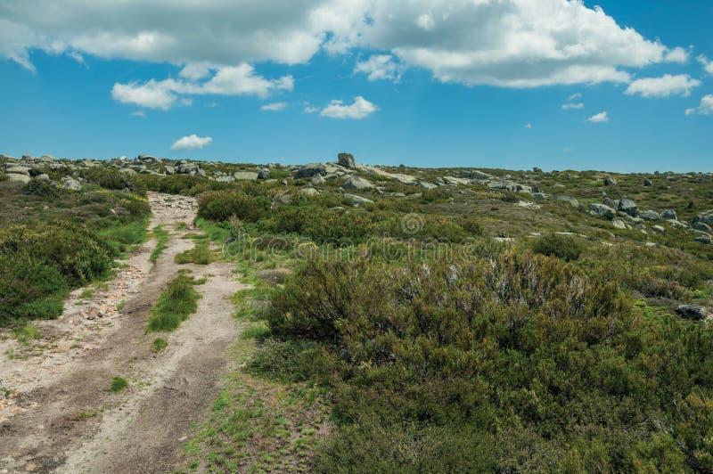 След идя через скалистую местность на гористых местностях стоковое фото rf