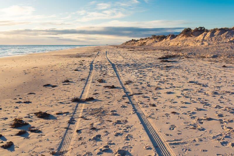 След 2 колес автомобиля управлял вдоль широкого пляжа стоковые изображения