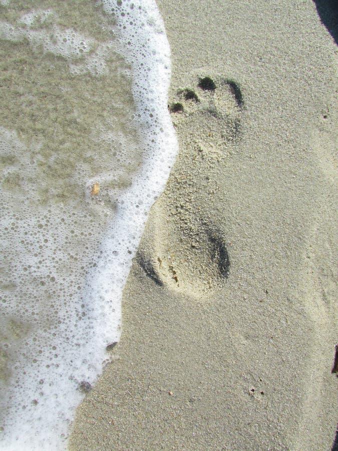 След в песке стоковое изображение rf