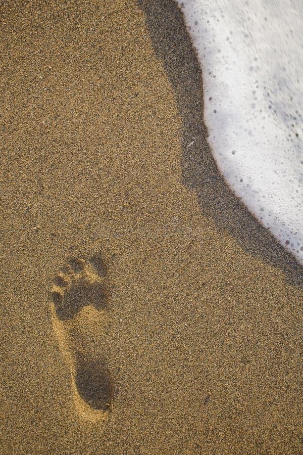 след ноги пляжа стоковое фото rf