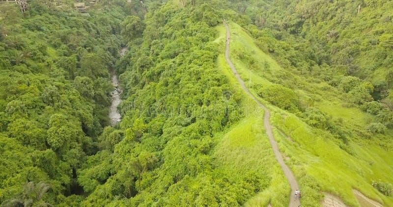 След острова Бали художника, взгляд от верхней части стоковое изображение