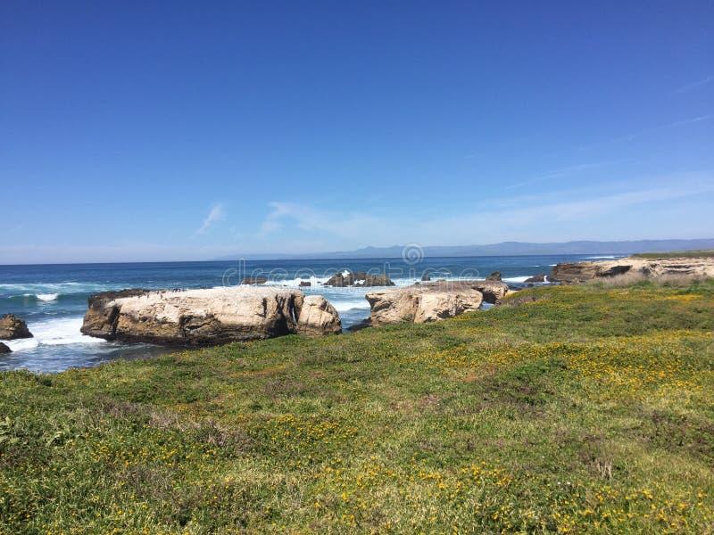 След Buchon пункта - wildflowers, блефы и пещеры с видом на океан стоковое изображение