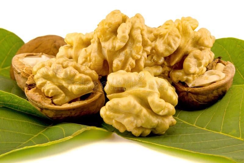 Слезли конец-вверх грецких орехов Изолируйте ядр листьев и обстреляйте o стоковое изображение rf