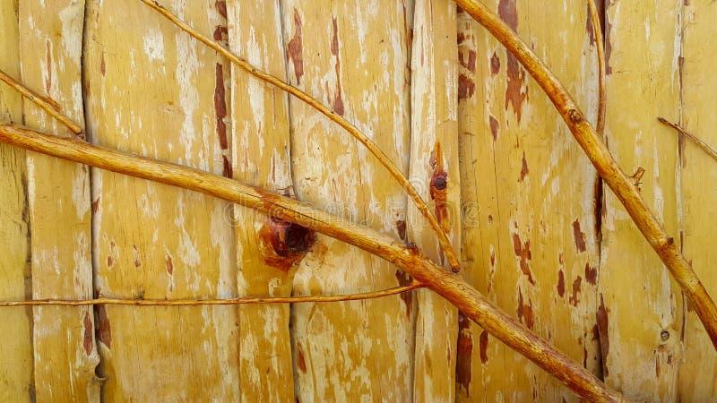 Слезли хворостины, залакированный с прозрачным лаком и прикрепленный к деревянной загородке которая также сделана из деревянных д стоковая фотография rf