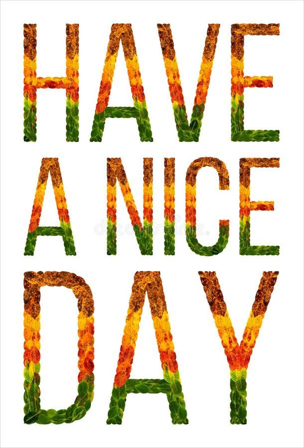 Слово имеет славный день написанный с предпосылкой листьев изолированной белизной, знаменем для печатать, творческая иллюстрация  иллюстрация штока