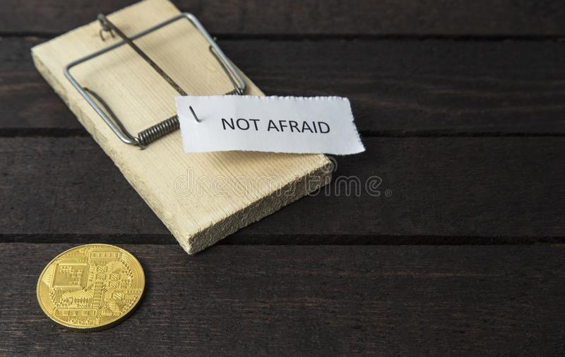 Слово: Испуганное прикалыванное на ловушке мыши с задней стороной bitcoin стоковые фотографии rf