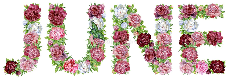 Слово ИЮНЬ цветков акварели иллюстрация вектора