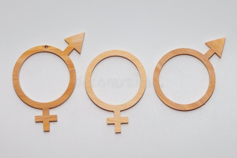Слово РАВНОСТИ высекаенное из переклейки Символ равенства полов o Символ человека и женщины стоковая фотография rf