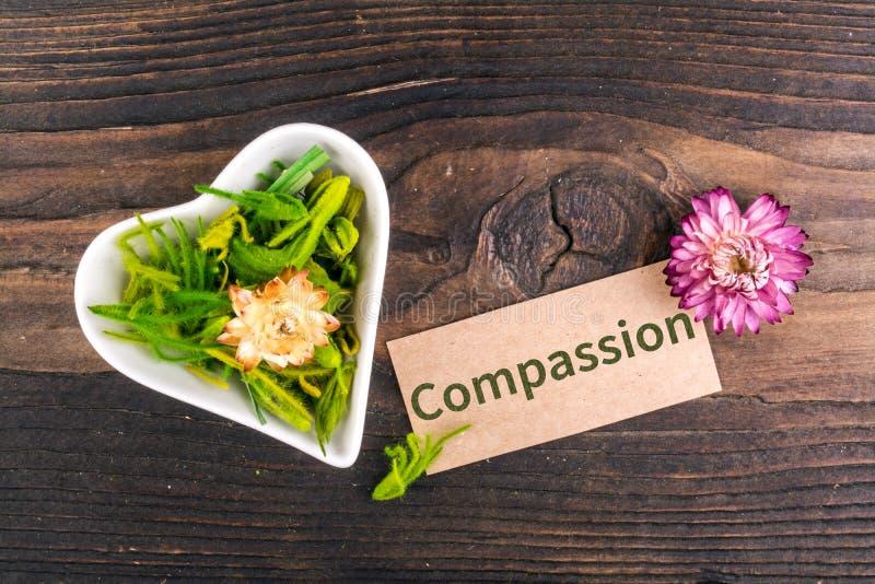 Слово сострадания на карточке стоковые фотографии rf