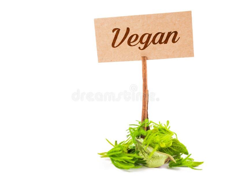 Слово Vegan стоковые фотографии rf