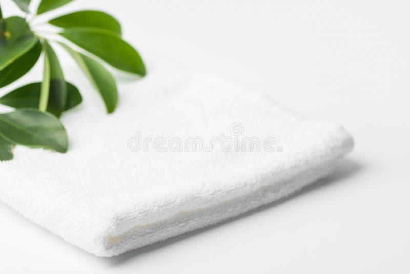 Сложенный чистый белый пушистый завод зеленого дома полотенца Terry в bathroom Минималистский воздушный стиль Забота тела прачечн стоковое изображение rf