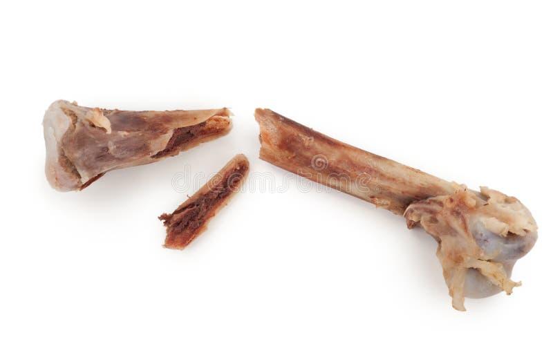 Сломленная косточка цыпленка стоковое изображение