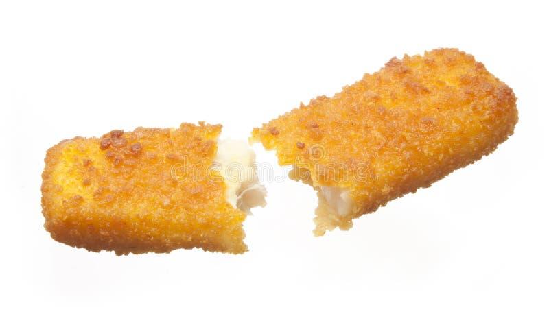 сломленная ручка рыб стоковые изображения rf
