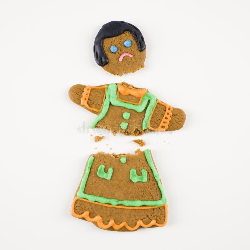 сломленный gingerbread печенья стоковые изображения rf