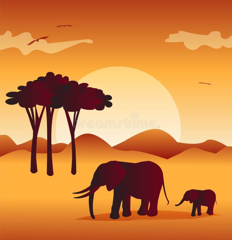 Слоны в сафари с предпосылкой одичалых и захода солнца иллюстрация вектора