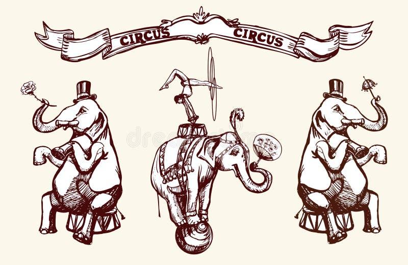 Слоны цирка иллюстрация штока