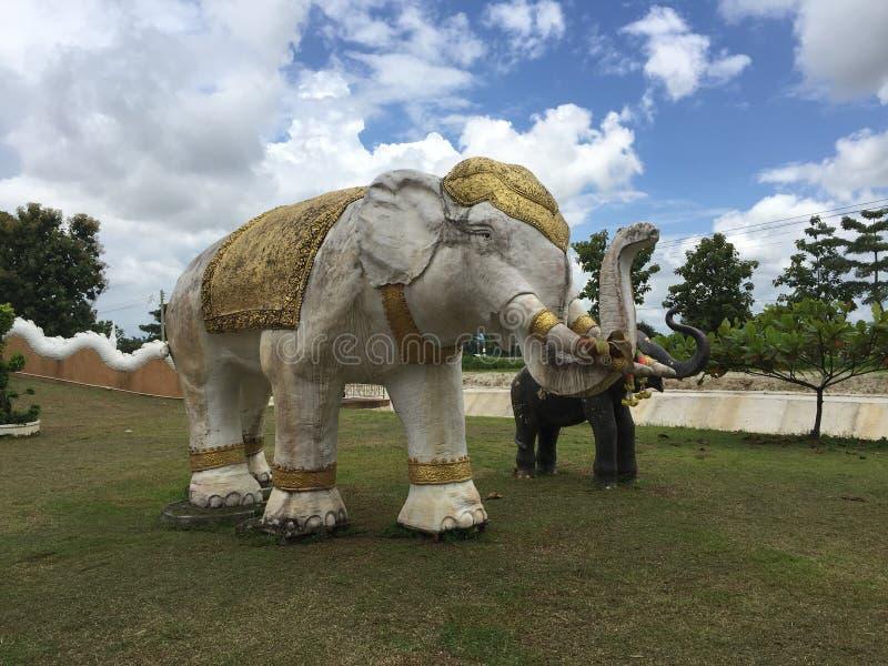 слон ฺAn в виске бамбукового сплетенного Будды стоковая фотография