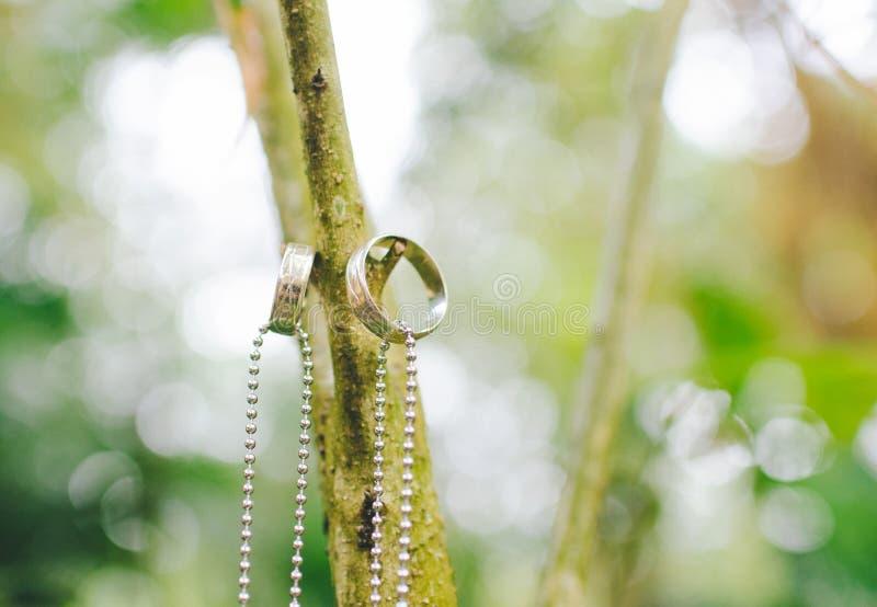 Смертная казнь через повешение кольца пар в ветви стоковое изображение