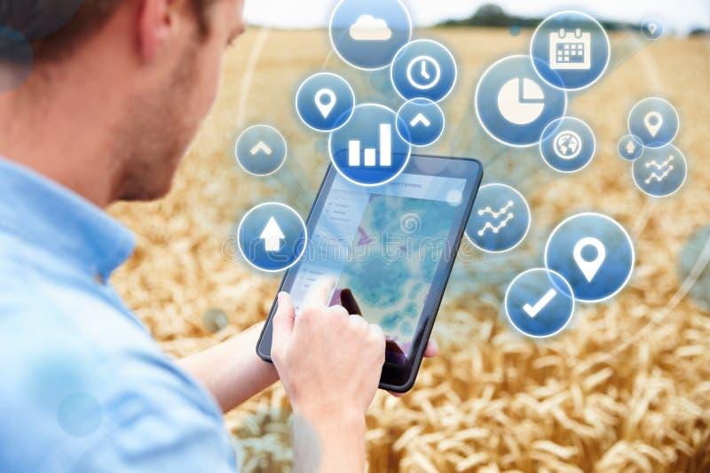 Смесь фермера в данных по поля достигая на таблетке цифров стоковое изображение rf