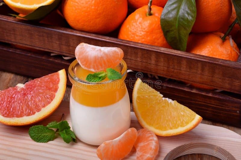 Сметанообразная плитка panna и оранжевый студень цитруса 2 наслоенный десерт стоковое изображение