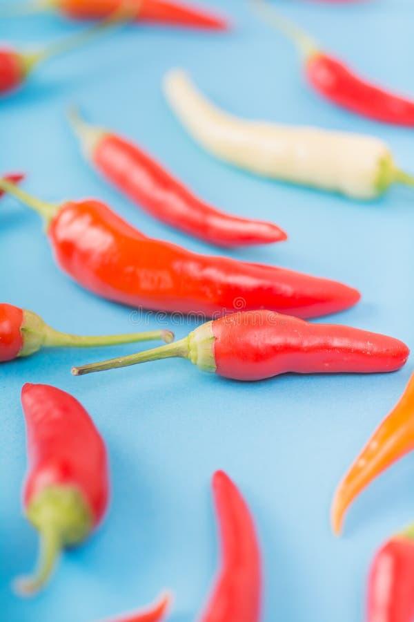 Смешанная предпосылка перца chili цвета стоковое фото