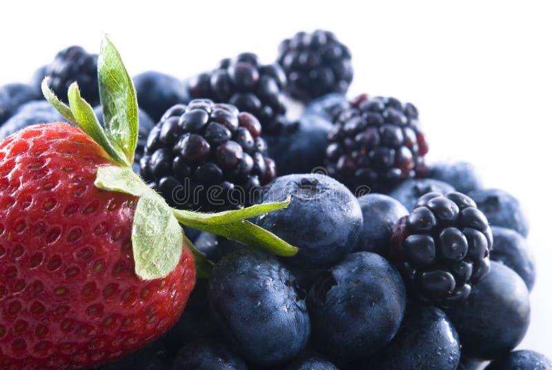 смешанные ягоды стоковая фотография