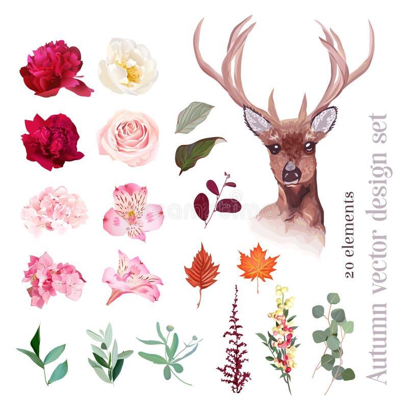 Смешивание осени флористическое, комплект дизайна вектора северного оленя головной иллюстрация штока