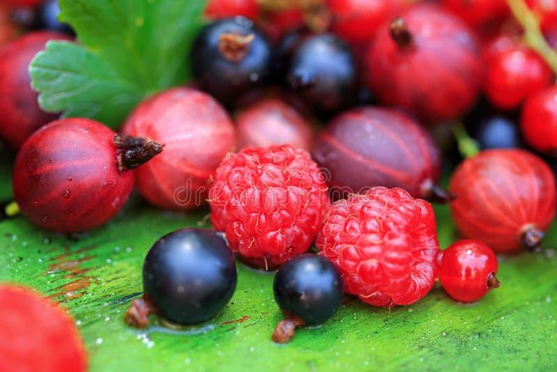Смешивание различных ягод лета на деревянной предпосылке стоковое изображение