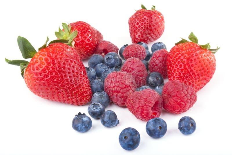 смешивание ягоды стоковое фото