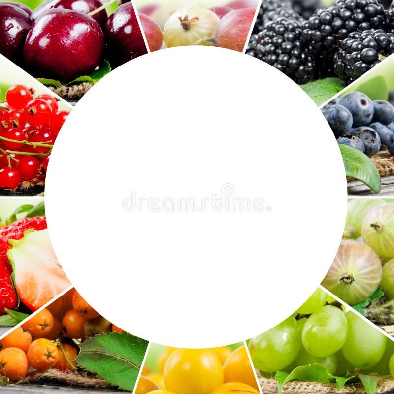 Смешивание ягоды стоковое фото rf