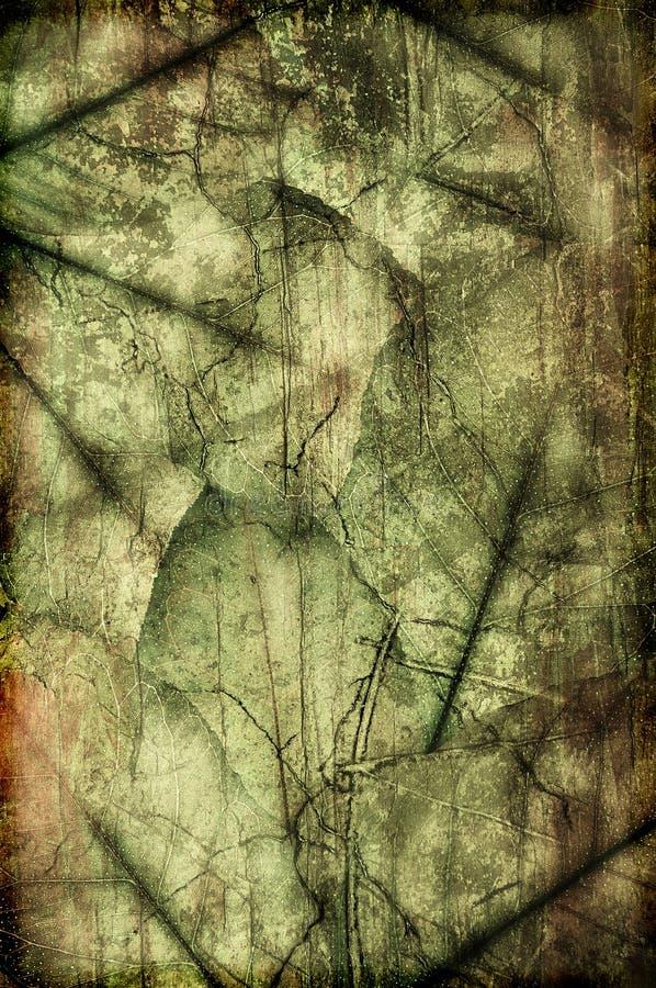 смешивание grune органическое стоковое фото