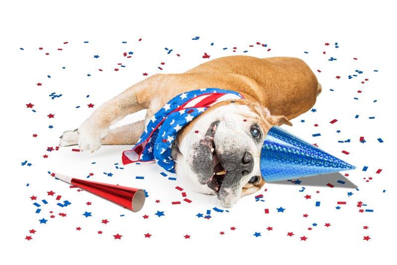 Смешная патриотическая собака партии стоковая фотография
