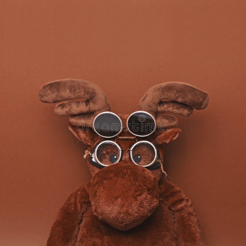 Смешная пилотная игрушка лосей с винтажными стеклами против коричневой предпосылки с пустым пространством над его головой - ультр стоковая фотография rf