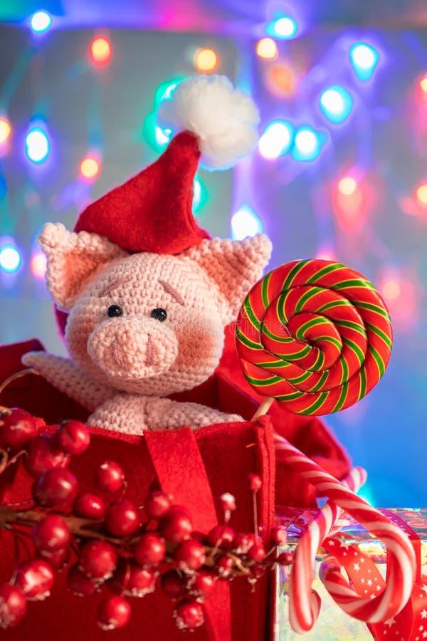 Смешная свинья в красной сумке с леденцом на палочке на предпосылке с освещением Смешная поздравительная открытка с Новым Годом 2 стоковые фотографии rf