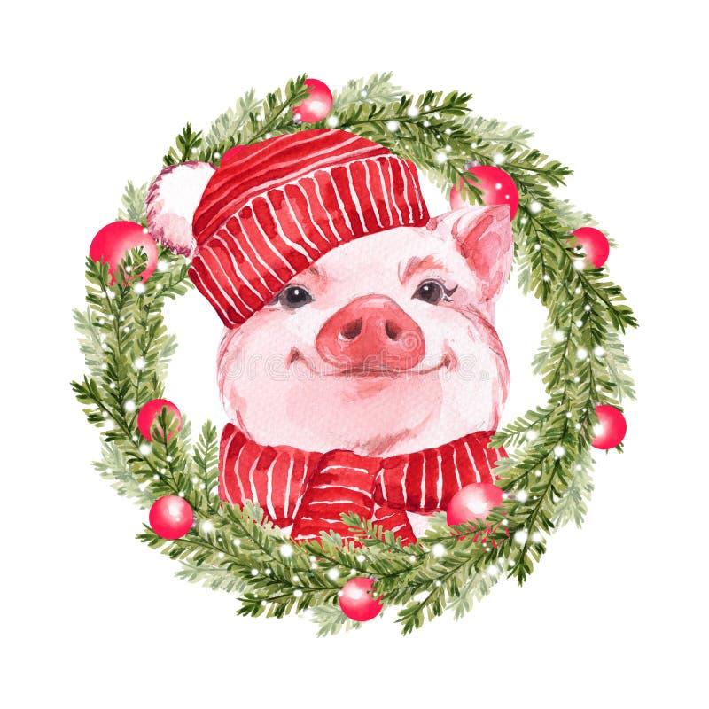 Смешная свинья и венок рождества Милая иллюстрация акварели бесплатная иллюстрация