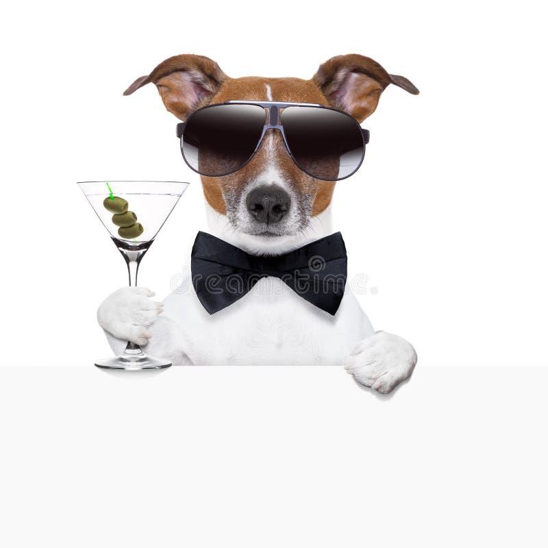 Смешное знамя собаки коктеила стоковые фотографии rf