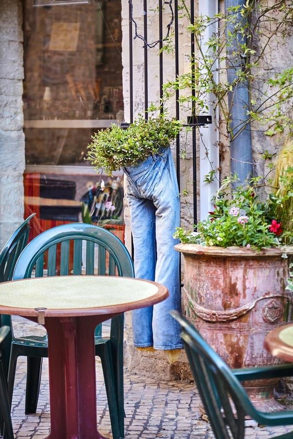 Смешная сцена: голубые джинсы используемые как цветочный горшок повиснули от стены стоковая фотография