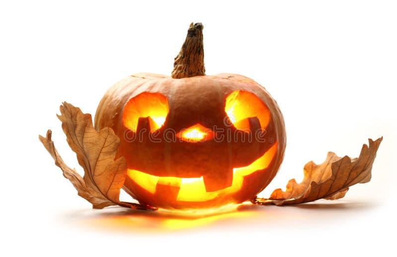 Смешная тыква хеллоуина стоковая фотография rf