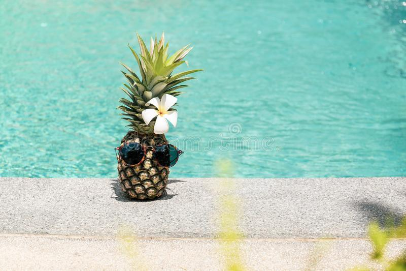 Смешной ананас с солнечными очками и цветком рядом с бассейном стоковые фотографии rf